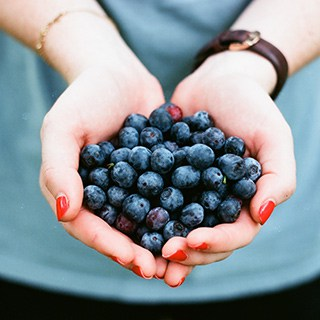 closeup of a person's cupped hands filled with blueberries