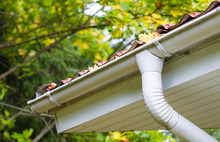 House gutter filled with leaves and debris