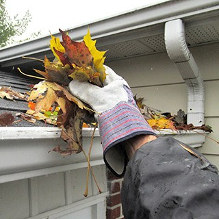 A gloved hand removing leaves from a house gutter