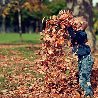 a child playing in fallen leaves in a yard