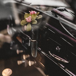 pink flowers with green leaves in a vial attached to a car interior
