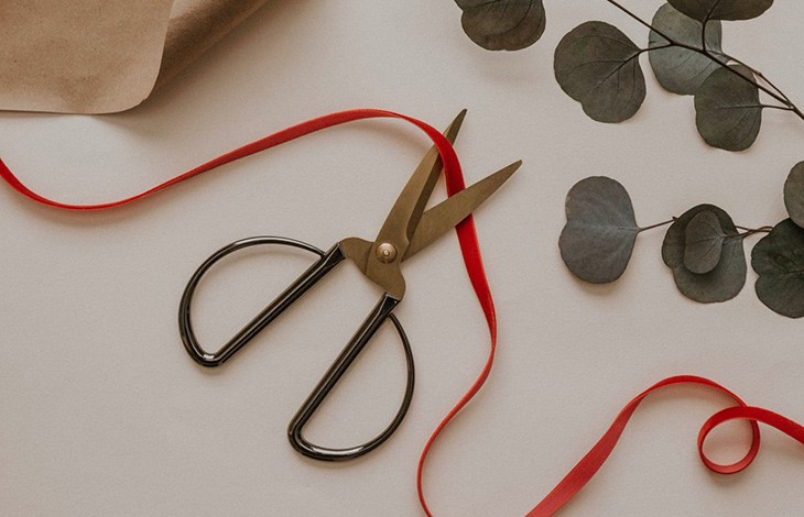 a pair of scissors on top of a red ribbon with eucalyptus in the top right of the frame
