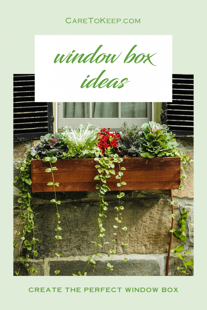 """photo of a windobox filled with flowers and trailing vines on a light green background with green text that reads: """" CareToKeep.com - window box ideas - create the perfect window box"""