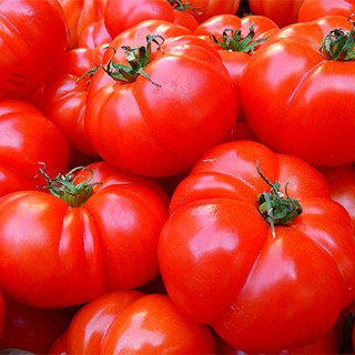 large, red tomatoes at the store