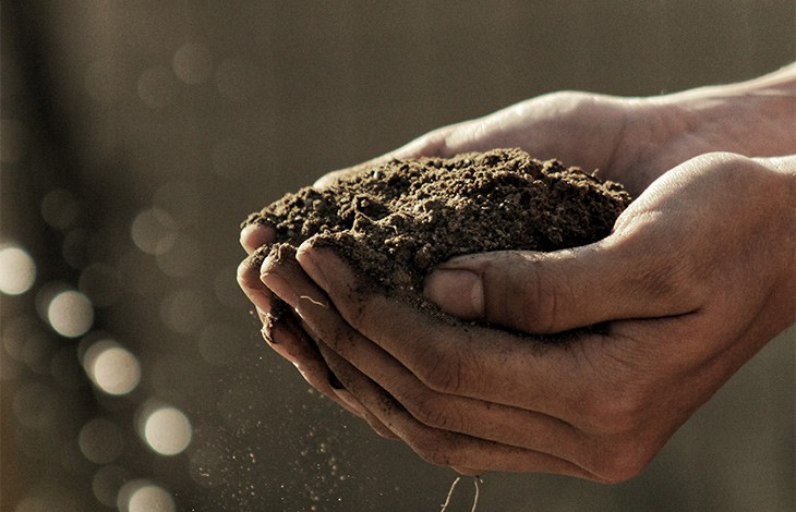 outstretched hands cupping a pile of dirt